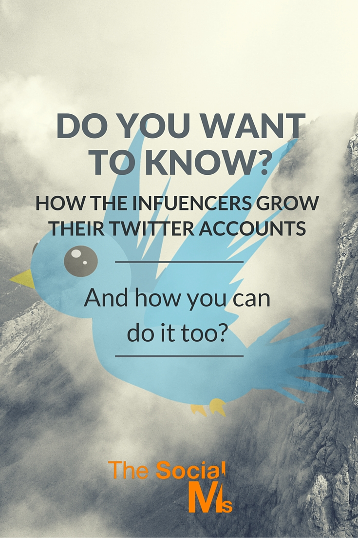 Have you ever wondered how all the influencers on Twitter got their accounts on the path to Twitter growth? See how they do it and how you can do it, too.