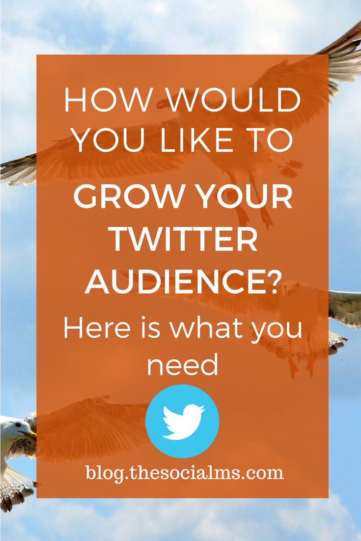 ManageFlitter manages to deliver a Twitter tool that not only works but is also fun to use. It makes growing a Twitter following easy. twitter audience, how to grow twitter followers, twitter marketing tips