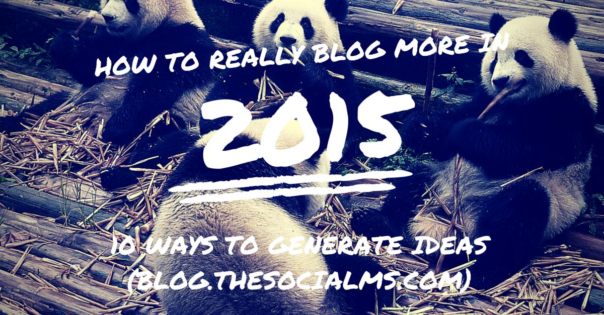 Blog More