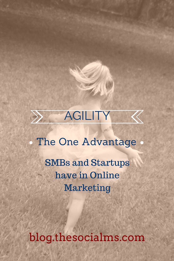 Agility: The Ability to react and make quick decisions gives a huge competitive Advantage to SMBs and Startups in Online Marketing