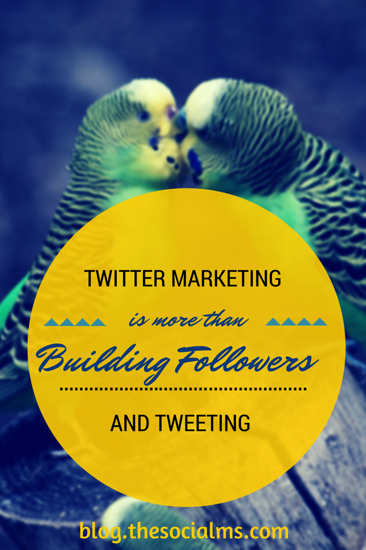 To be successful with Twitter Marketing your need more than followers and sending out tweets: A clear strategy, goals and focusing on your target audience.