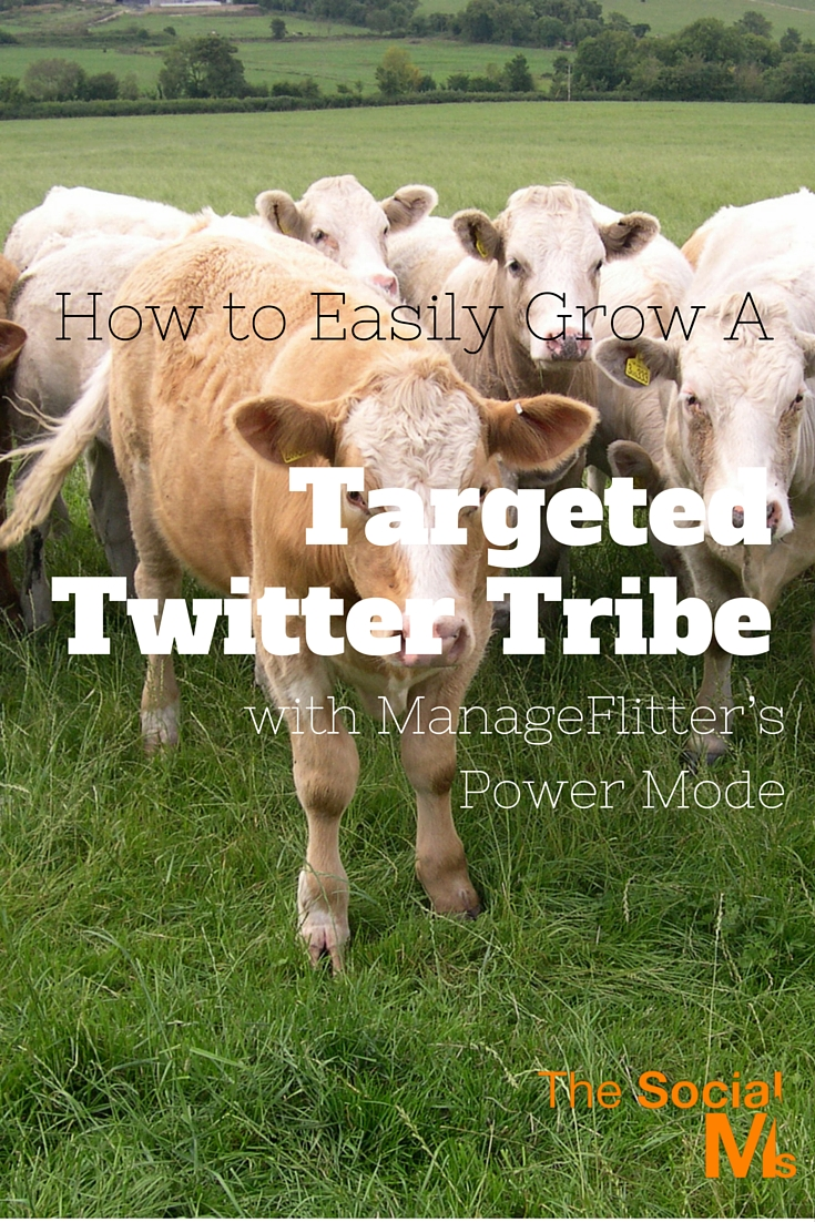 ManageFlitter: A tool that can make growing a targeted Twitter account easy with its highly recommended Power Mode. Targeting on Twitter can be easy.