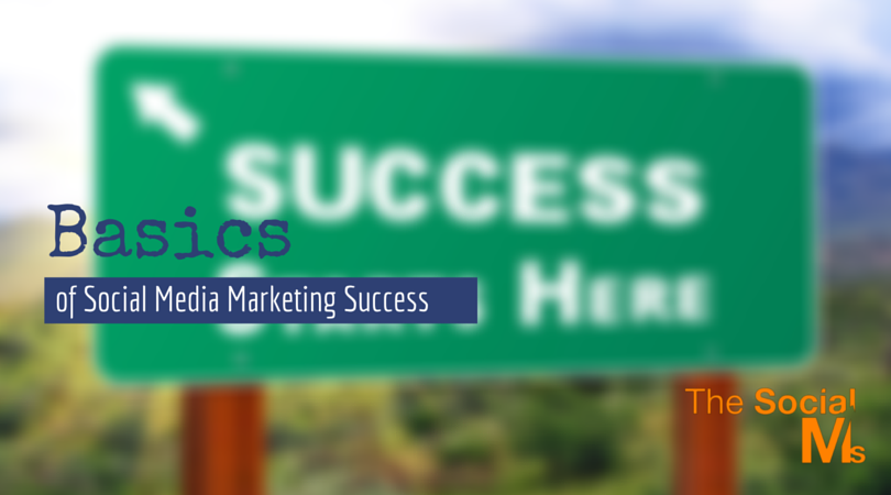 blog.thesocialms.com - Susanna Gebauer - The Basics of Social Media Marketing Success