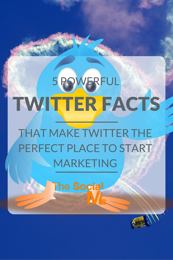 Do you know what makes Twitter a perfect starting point for marketing? Here are the powerful Twitter facts that will lead you to Twitter marketing success