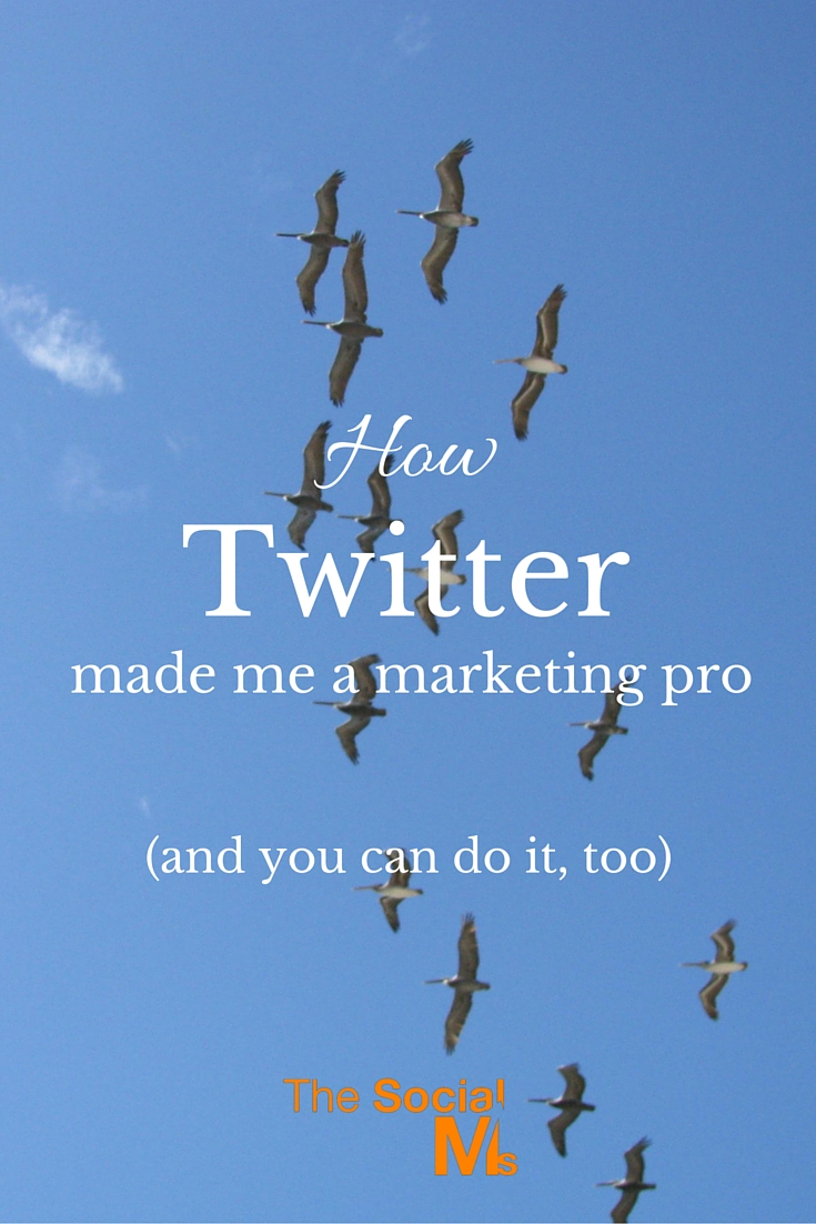 In order to market successful I had to learn Twitter. Twitter made me a marketing pro and enabled me to grow traffic for any business without advertising it