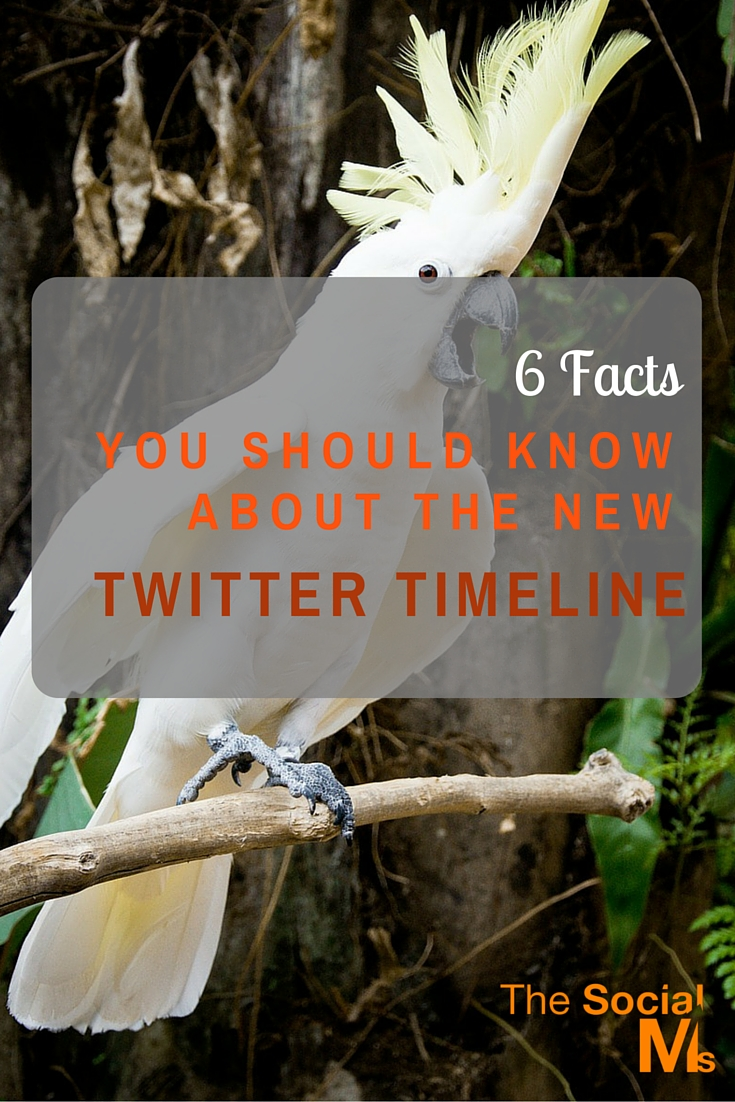 Rumors had it that Twitter would be changing its timeline. The new Twitter timeline is much less a change and much more an addition to what we all know.