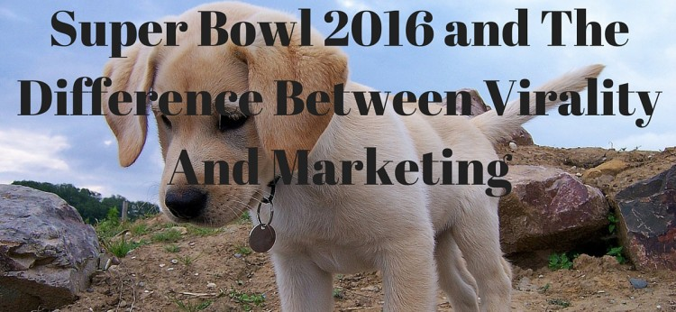 Super Bowl 2016 and The Difference Between Virality And Marketing
