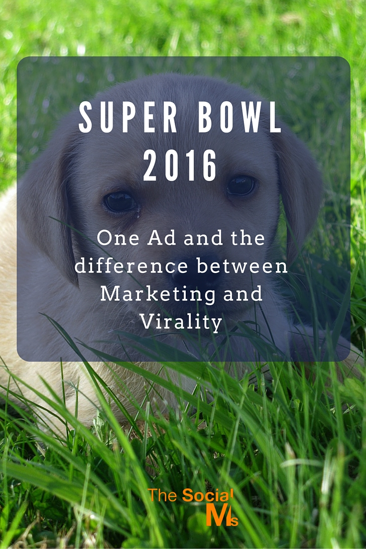 It's that time of year again. Super Bowl 2016. And here is what the Super Bowl ads can tell about the difference between marketing and virality.