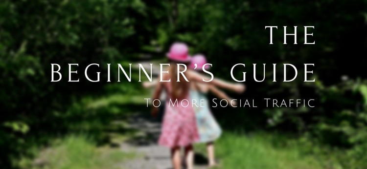 The Beginner's Guide To More Social Traffic (1)