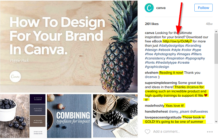 canva-collecting-leads-from-instagram