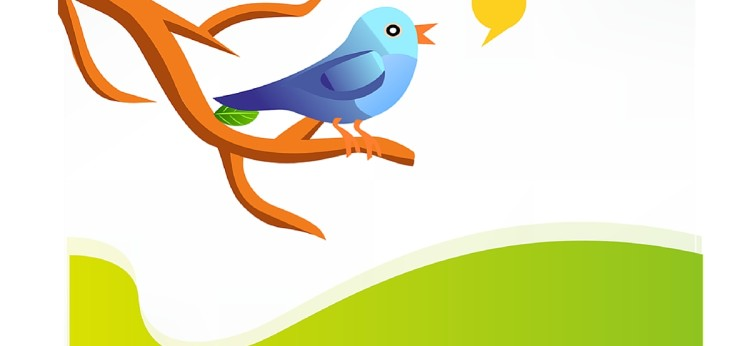 Improve Your Customer Service Using Twitter
