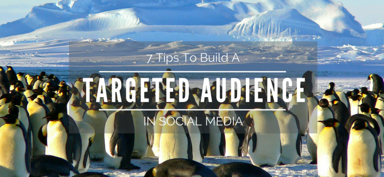 targeted-audience-social-media