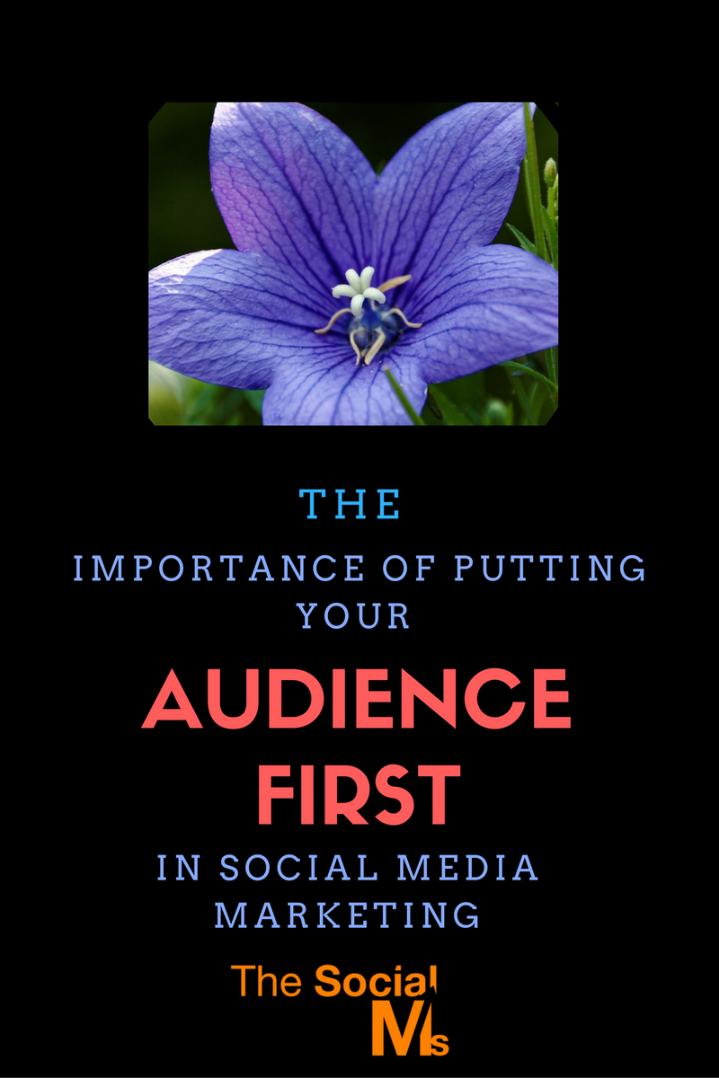 In social media marketing, you have to cater to the needs of your audience first. Only when you build relationships and trust you can go for a sale.