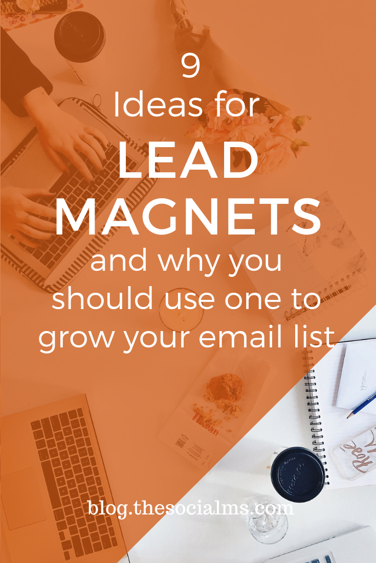 As one of the first steps on your success journey, you have to implement a lead capturing system on your website. Lead magnets will help you capture more leads and grow your email list with interested subscribers. #leadmagnet #emaillist #leadgeneration #emailmarketing #salesfunnel #listbuilding #onlinebusiness