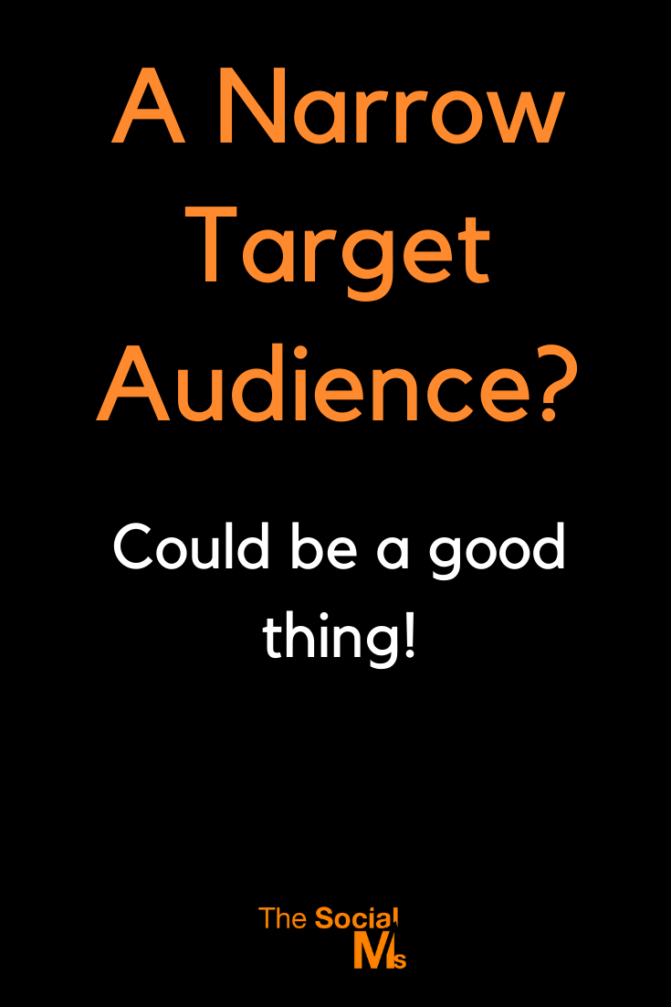 here are some very good reasons why a narrow target audience might even be an awesome idea for a blog. #blogaudience #bloggingtips #bloggingforbeginners #startablog