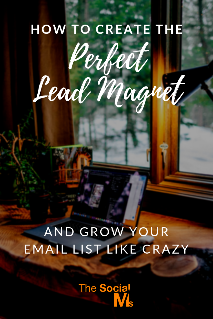 Here are 10 most important attributes your lead magnet should have to help you create and choose the perfect lead magnet for your audience and grow your email list like crazy. #leadgeneration #leadmagnet #salesfunnel #emaillist #listbuilding #emailmarketing