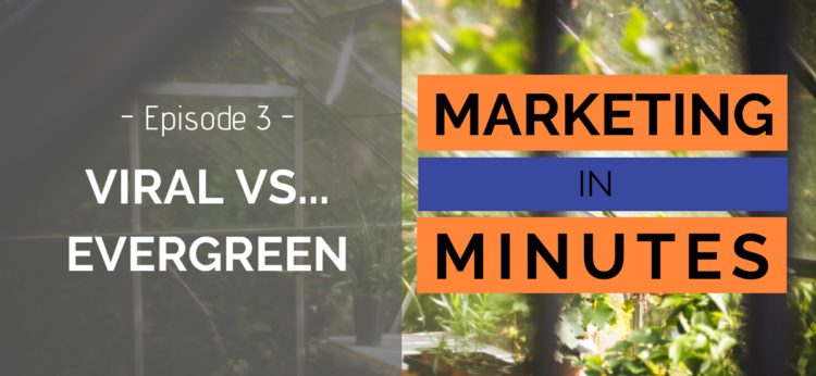 Viral content vs Evergreen content