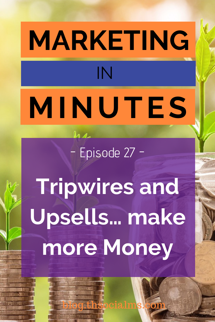 What if you could double your revenue without getting more traffic? I will tell you about Tripwires and Upsells, two important tactics you can use to make more money - without getting a single click more on your website. #makemoneyblogging #bloggingformoney #marketinginminutes #bloggingtips #onlinebusiness #salesfunnel #onlinesales