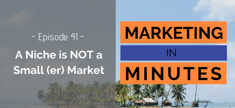 Marketing in Minutes - Niche