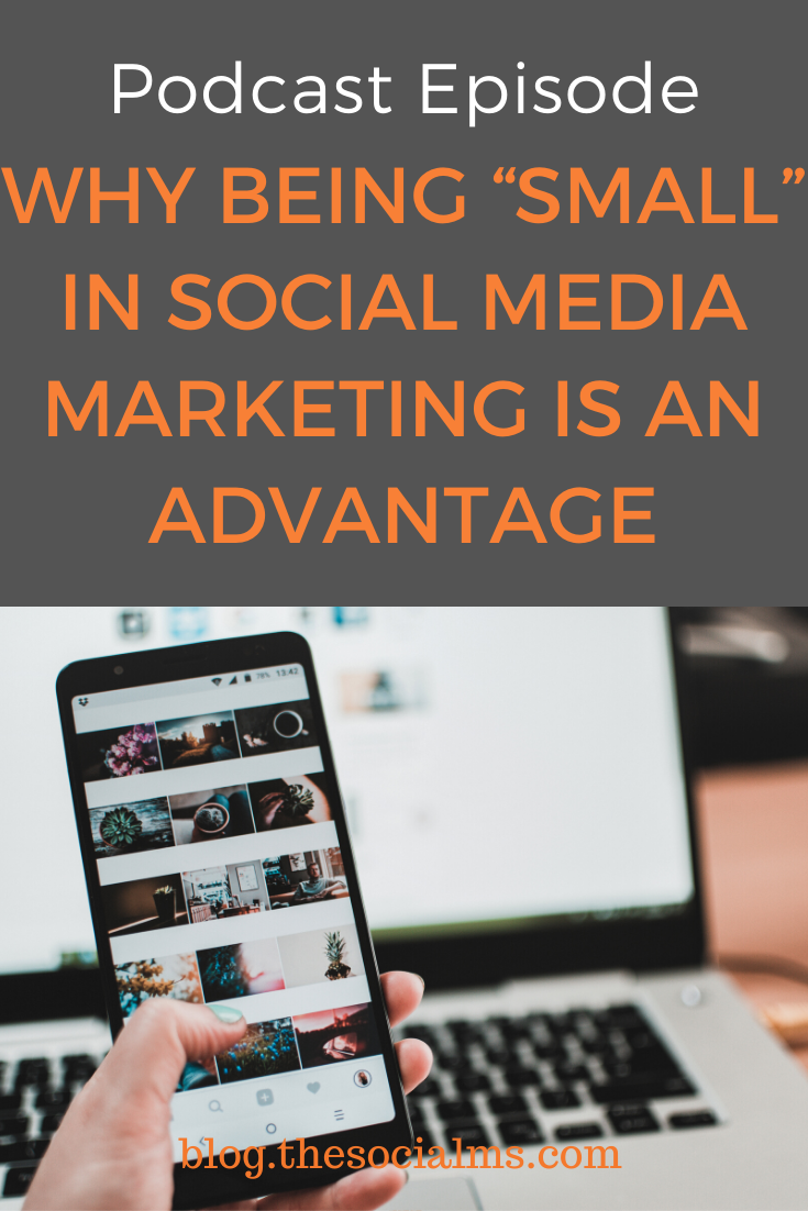 Social Media Marketing: Everybody is afraid of being the small brand on social networks - but the truth is, being small is your biggest competitive advantage. Learn why. #socialmedia #socialmediatips #socialmediamarketing #socialmediastrategy #smallbusinessmarketing #digitalmarketing